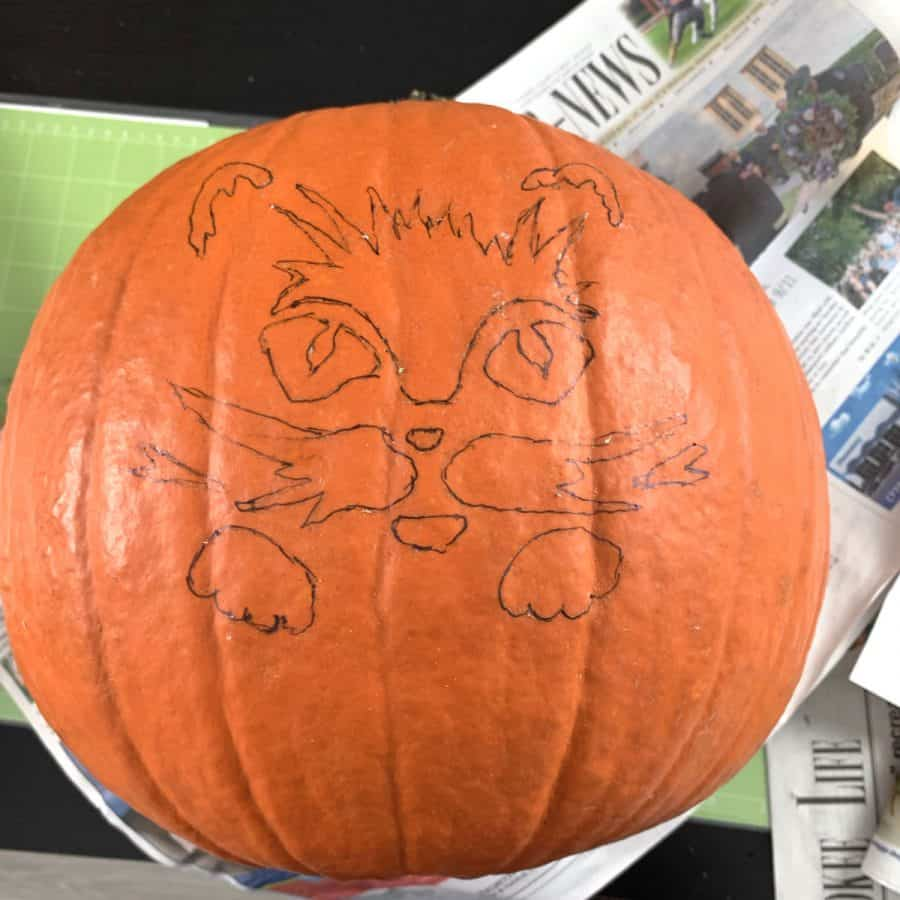 outlines of cat face from stencil pattern on pumpkin to be carved