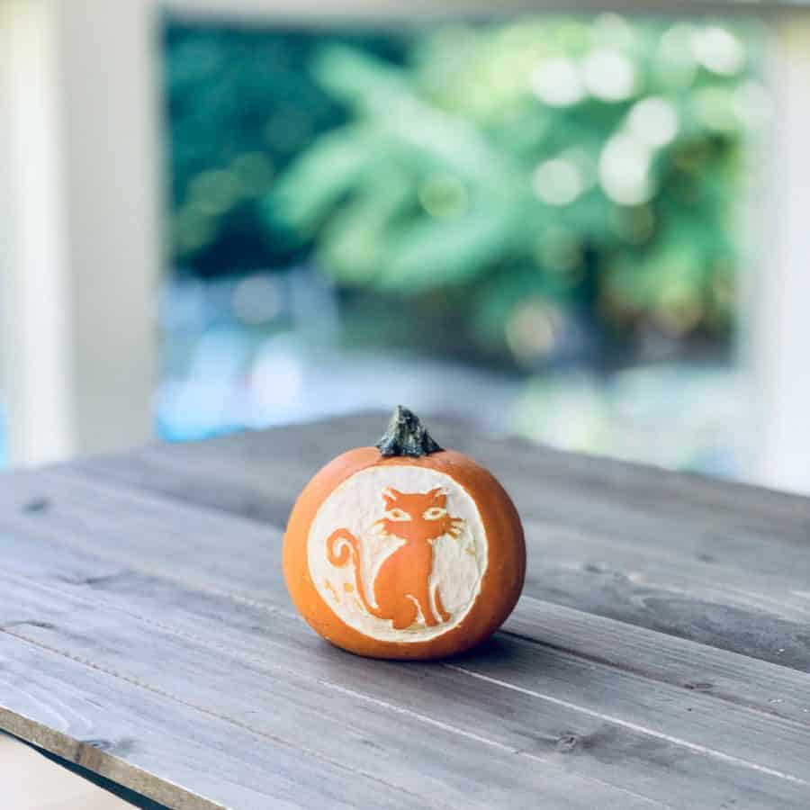 small pumpkin on table with image of cat etched on it