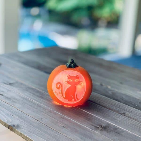 Carve A Mini Pumpkin Cat For Halloween