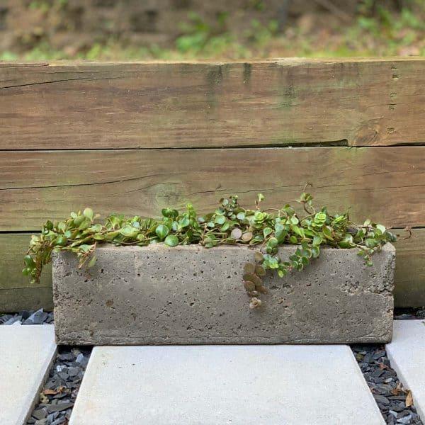 DIY Large Hypertufa Planter –Trough-shaped