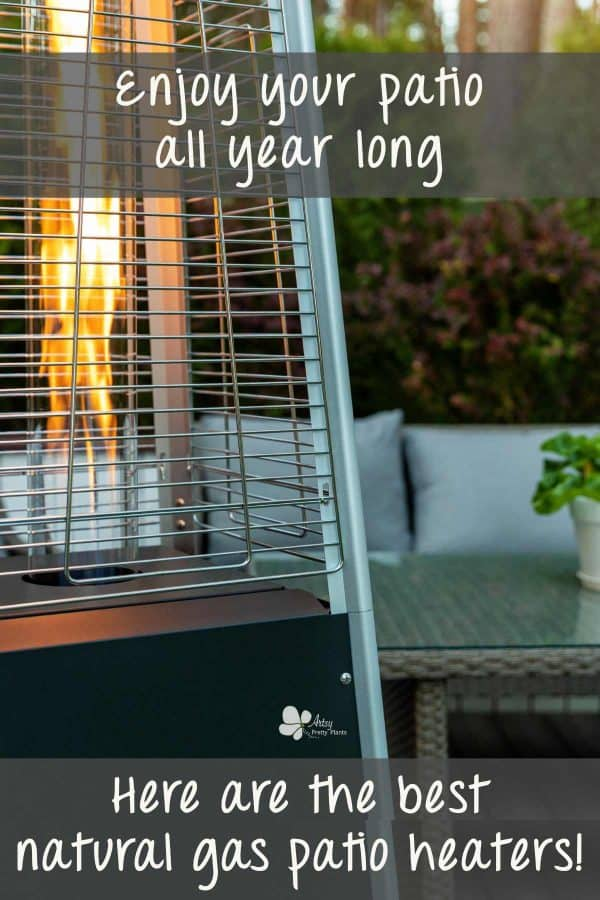 Best Natural Gas Patio Heater